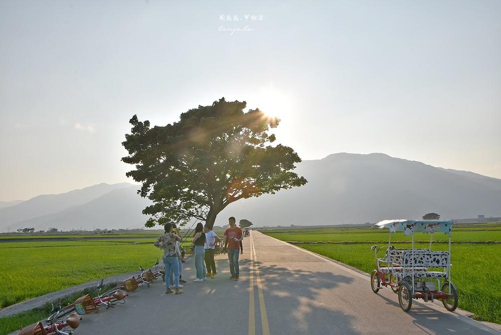 【台東景點推薦】池上伯朗大道、金城武樹、大坡池 騎腳踏車穿梭翠綠稻田間
